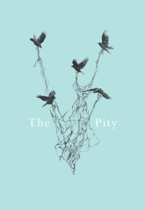 The Pity book cover