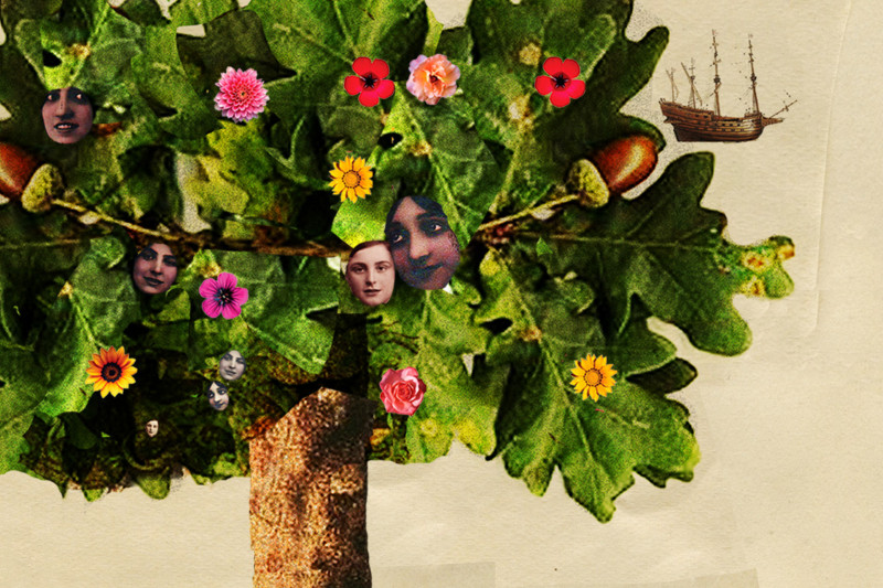 National Poetry Competition 2015 promo image tree and faces