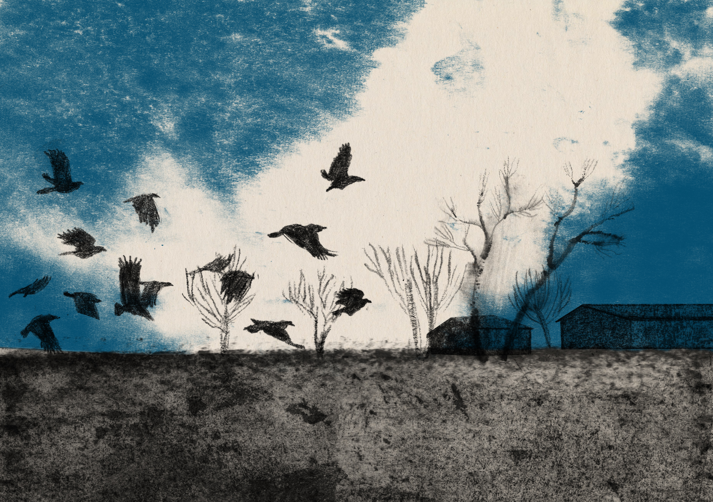 Crows' flight by Iro Tsavala, from Yappo.