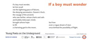77 If a boy must wonder, Leon Yuchin Lau