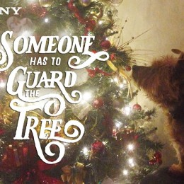 Someone Has to Guard the Tree - image by Tracey Wolverson