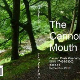 Cannon's Mouth Magazine