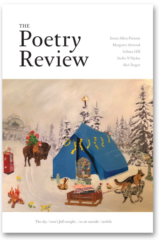 The front cover of The Poetry Review winter 2020 issue is a painting by Anna Jensen. It features images taken from poems in the issue: a petrol pump, a fire and a bison, as well as two dogs pulling a sled and a big blue tent.